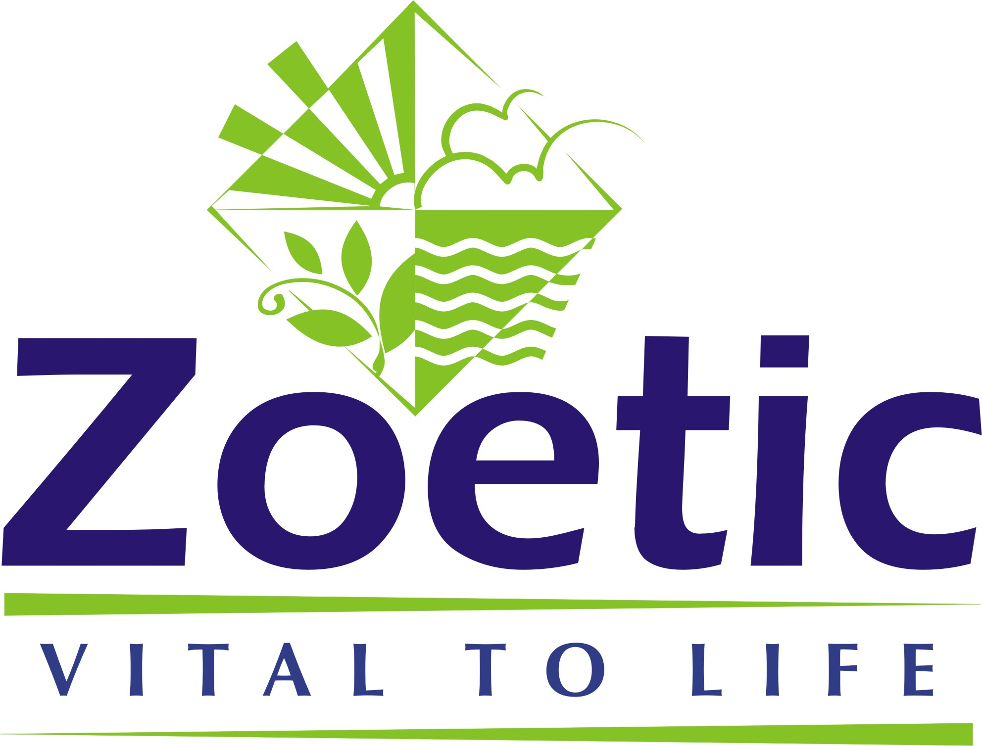 Zoetic Ayourvedics Pvt. Ltd.