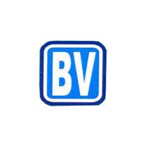 Biswajit Valve Manufacturing Co