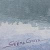 Seema Arts