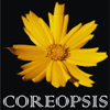 Coreopsis Fountain And Landscaping Private Limited