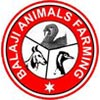 Balaji Animals Farming