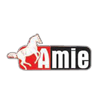 Amie International