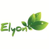 Elyon Traders Llp