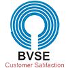 Bvs Enterprises