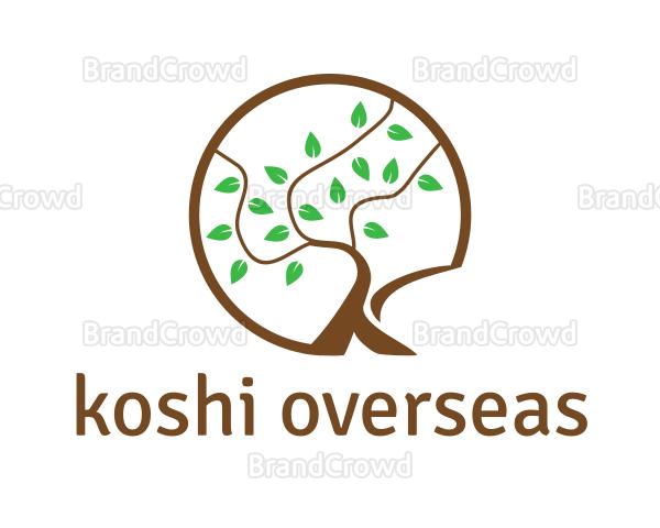 Koshi Overseas