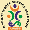 Ammss (a Multi Model Service Solution)