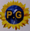 Pg Solar Power
