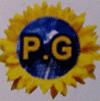 Pg Solar Power
