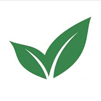Greencup Paper Product