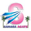 Sahara Agate Exports