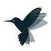 Birdent Healthcare