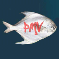 Reef Cod Fish Manufacturers, Suppliers & Exporters in India
