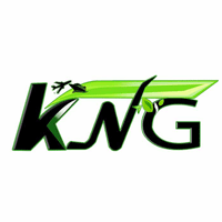 Kng Exports