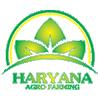 Haryana Agro Farming