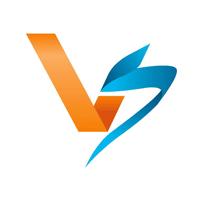 V & S Company