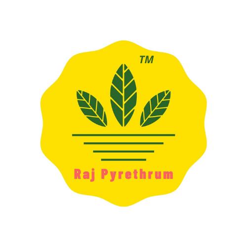 Raj India Overseas