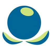 Blueberries Exports