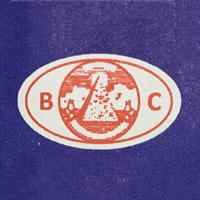 Bhavin Colour Chem