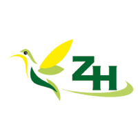 Zoister Healthcare Pvt Ltd