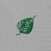 Green Leaf Textiles Cochin