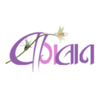 Baghban- The Online Florist
