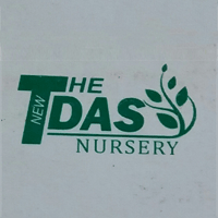 The New Das Nursery