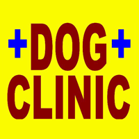 Dog Clinic In Sitapura Jaipur