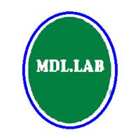 Mdl Lab