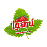 Laxmi Strawberry Farm