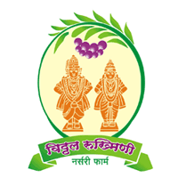 Vithal Rukhamai Nursery Pharm