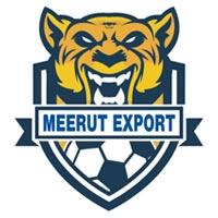 Meerut Export