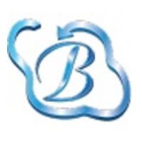 Bhavitra Technologies Pvt Ltd