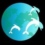 Dolphinternational