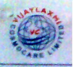 Vijaylaxmi Cosmocare Limited